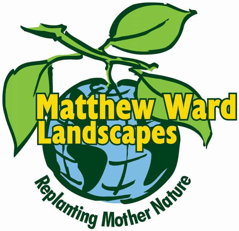 Matthew Ward Landscapes